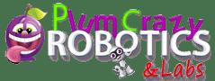 Plum Crazy Robotics - Classes in Robotics, Electronics, 3D Printing,  3D Game Building, Drones & DIY Projects